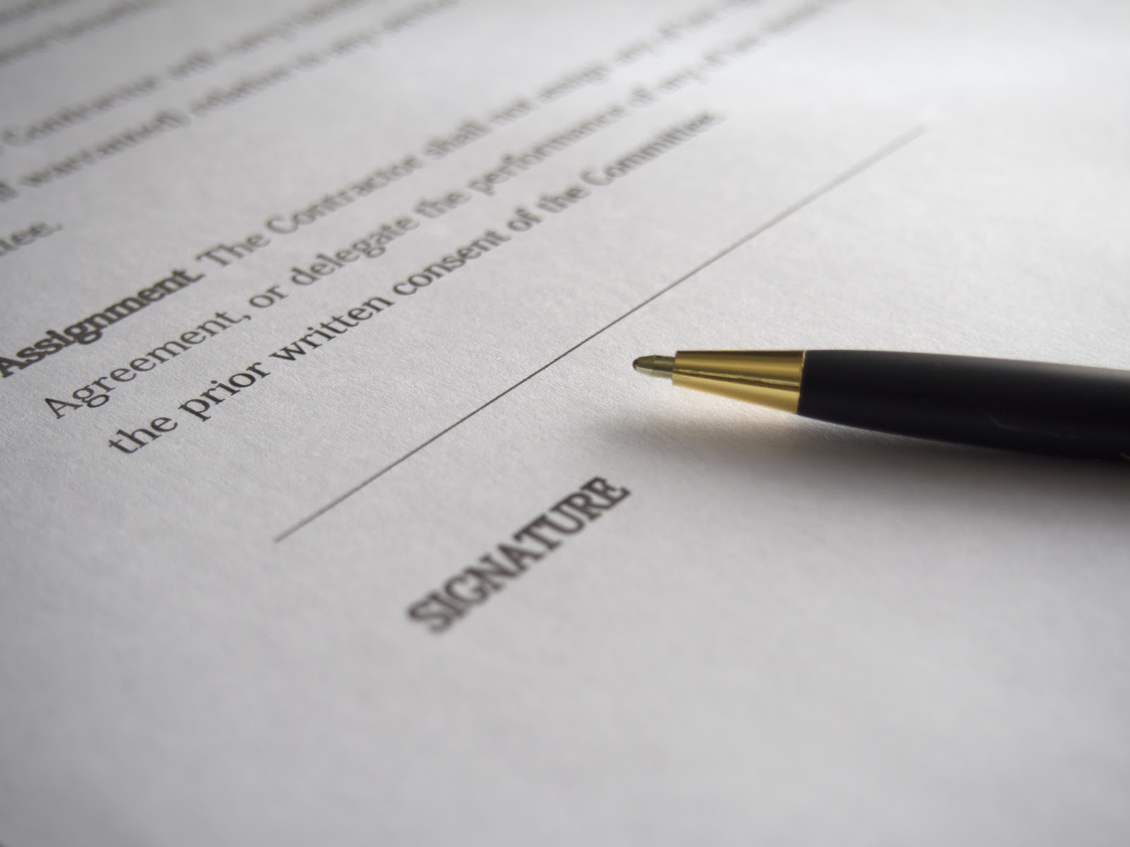Canva Business Signature Contract Document Deal